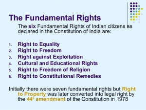 Law notes on fundamental rights