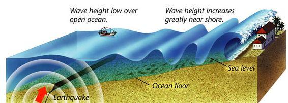 How Tsunami works