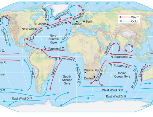 Movement of Ocean Water – Geography Study Material & Notes