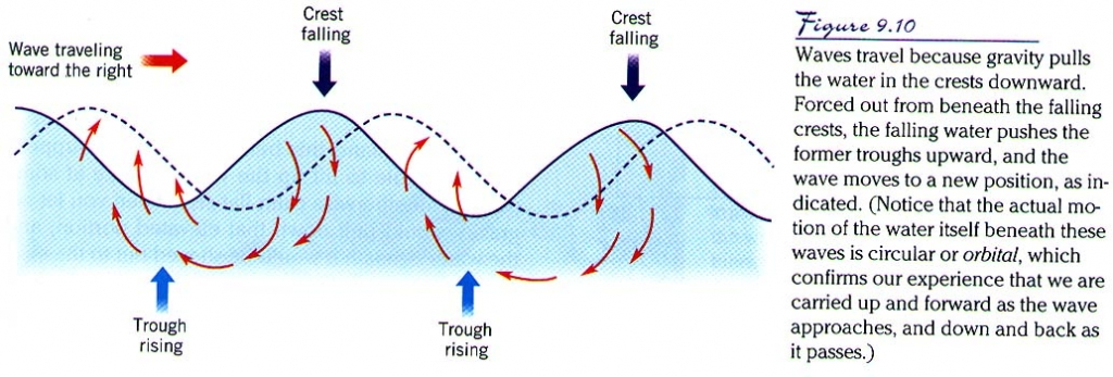 movements of ocean water motion of waves