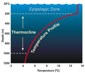 Water Resource in Oceans