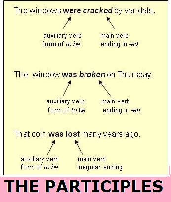 the participles
