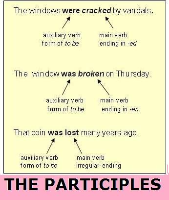 the participles