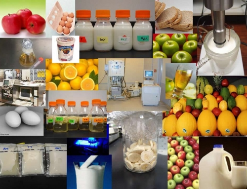 Food Processing Upstream & Downstream Requirements – Economics Study Material & Notes