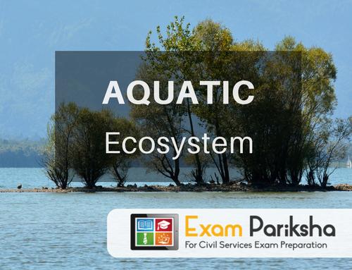 Aquatic Ecosystem
