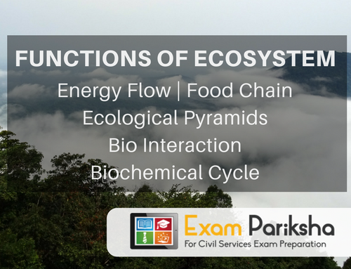 Functions of Ecosystem: Energy Flow, Food Chain, Trophic Level, Ecological Pyramids, Bio Interaction, Biochemical Cycle